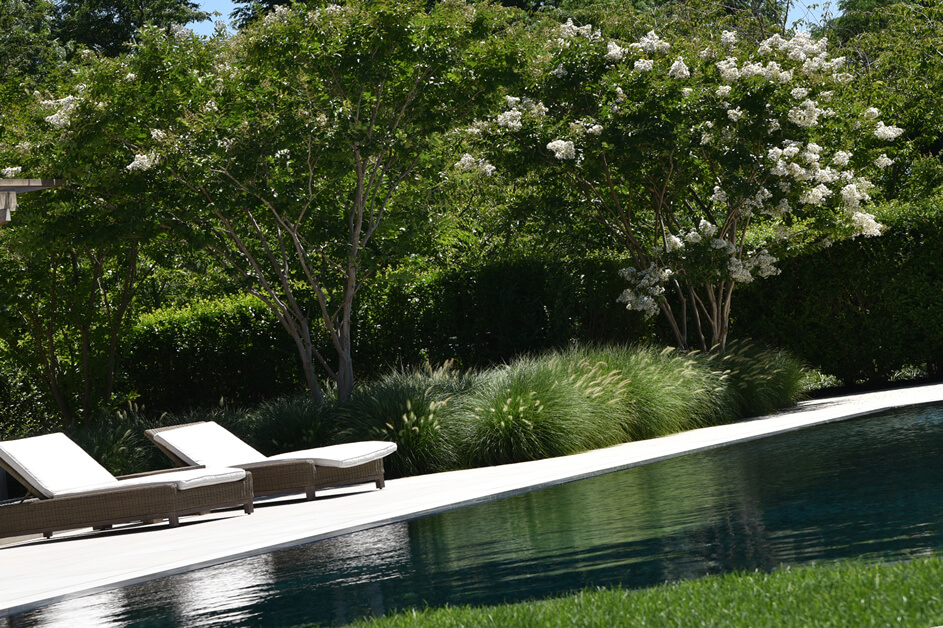 About Mandevilla Landscaping Lawn Care Services In Ny